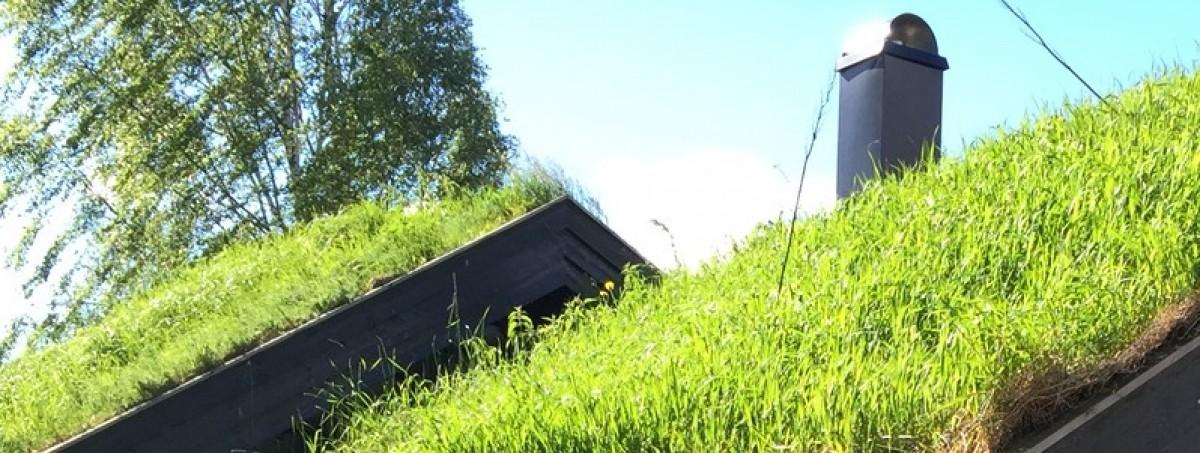 moderne hytter med torvtak